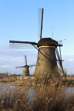 Two Kinderdijk windmills site, in early morning sunlight with water and reed in the foreground photo