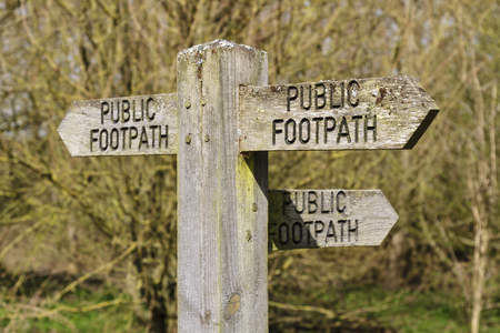 Public footpath sign pointing three ways against a forest background