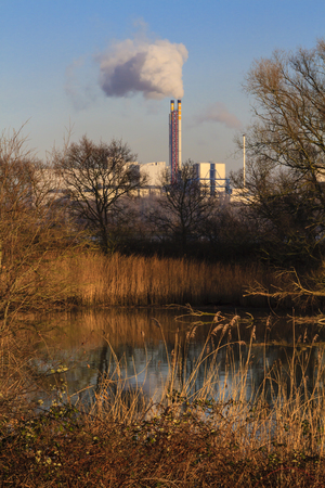 Waste incineration plant letting off steam on an autumn day with wetlands in the foreground Stock Photo