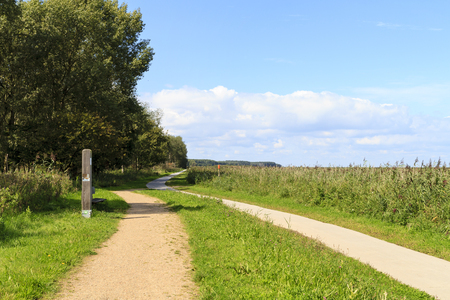 Winding footpath and cycle path through the nature reserve of Oostvaardersplassen