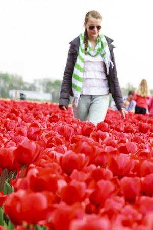 Noorwijkerhout, Netherlands - April 20, 2014: Young Girl Walking In A Field Of Red Tulips On A Visit To The Flower Fileds In The Netherlands.Thousands Of Tourists Are Attracted To The Area Every Year.