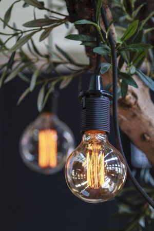 interior lighting: Interior lighting decoration hanging in a tree Stock Photo