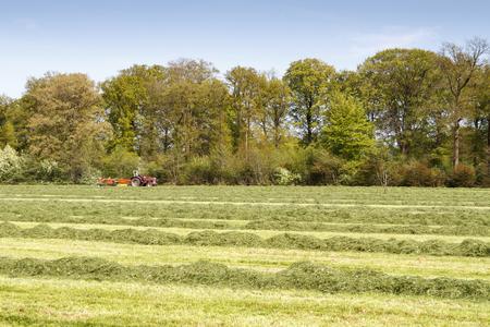 LEUSDEN NETHERLANDS - MAY 6 2016: Red tractor pulling a grass mower cutter through a lush green field.
