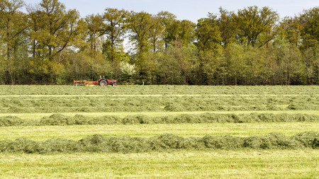 cutting through: LEUSDEN NETHERLANDS - MAY 6 2016: Red tractor pulling a swather grass mower cutting through a hay field on a spring day. Stock Photo