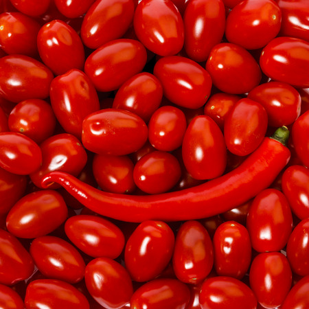 Single red hot chilli pepper surounded by candy tomatoes. Stock Photo