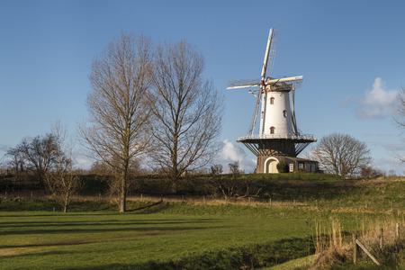Old windmill in Veere standing in the polder under winter sunlight.