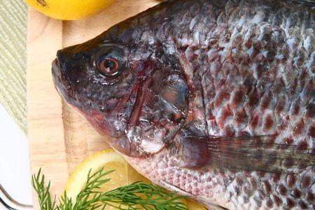 Fresh Ttilapia with tomato, lemon, dill on cutting board.  St. Peter's fish. Stock Photo - 3151034