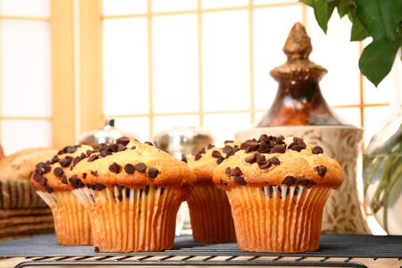 Chcocolate chip muffins in kitchen or restaurant or bakery. Stock Photo - 3189869