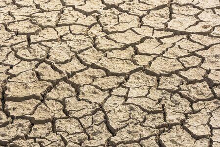 Cracked soil due to global warming. Detail shot. Texture. Horizontal Stock Photo