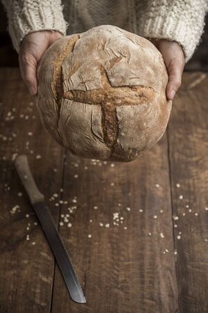 Bread, woman hands holding freshly baked sourdough bread on rustic background. With Copy Space