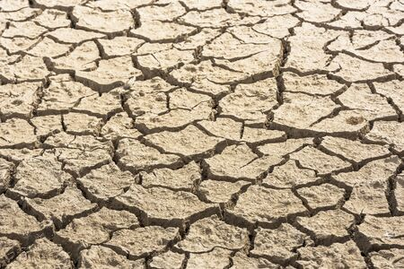 Cracked soil due to global warming. Detail shot. Texture.