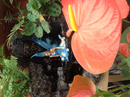 psychic: Blue Fairy, water and love the psychic