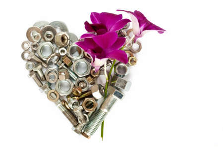 Hardware grouped as a heart next to a vibrant orchid Foto de archivo