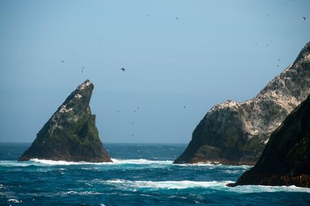 uninhabited: The Shag Rocks are six small, uninhabited, islands on the most western part of South Georgia. They are named after the South Georgian Imperial Shags, a sub-species of Comorants.