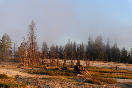 イエローストーン国立公園の西親指地域の日の出