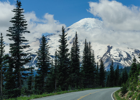 Mount Rainier peaking through the clouds and the surrounding forest.