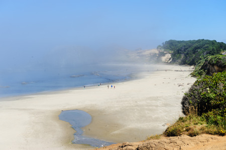 A mist covered beach, mid July in Oregon.