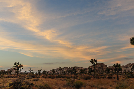 Sunset in Joshua Tree National Park, somewhere on the road between Barker Dam and Hidden Valley. Stock Photo