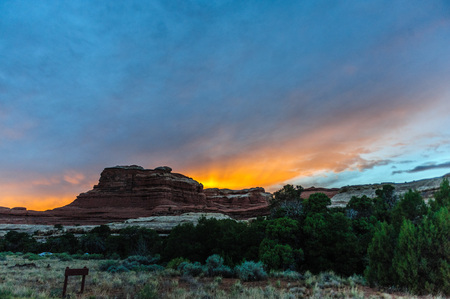 Sunset casting a red glow on the rocks of the Needles area in Canyonlands National Park, Utah. Stock Photo