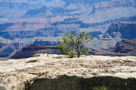 The Grand Canyon on a Summers afternoon in early august, near Desert View Watchtower.