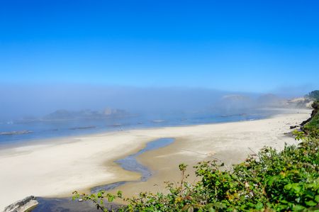A mist covered beach, near Seal Rock, mid July in Oregon.