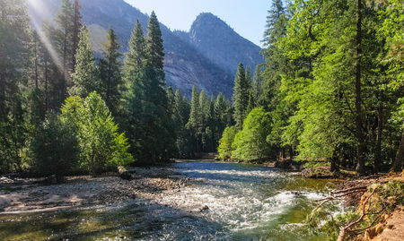 The Merced river on a sunny summers afternoon, flowing through Yosemite Valley. Yosemite National Park, California.