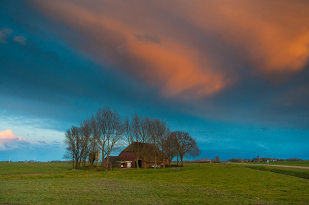 A tradiitonal  Frisian farm,  in the  county side on a spring evening during magic hour.