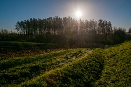 An early morning landscape including a tractor trail, in the east flemish country side. Stock Photo