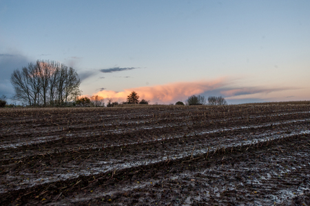 Impression of the east flemish country side, just before dusk on a fall afternoon
