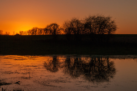 Silhouttes of trees reflected in a pool of water, just after sunset, in the east Flemish County side. Stock Photo