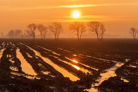 Sunset over the Frisian Countryside, reflected in a flooded field. Stock Photo