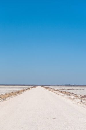 An overview of the empty space of the Etosha salt pan, Ethosha National Park, Namibia. Imagens - 129719819