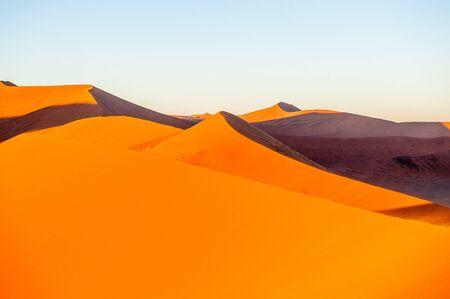 The massive Dunes of the Namibian Sossusvlei, are cast in an impressive orange glow during sunrise. Image taken at Dune 45, Namibia. Imagens