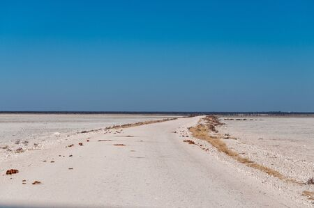 An overview of the empty space of the Etosha salt pan, Ethosha National Park, Namibia.