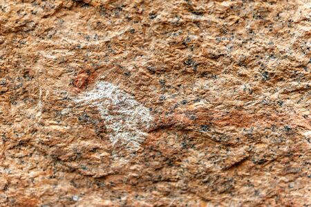 Detail of the prehistoric rock paintings of the San People in Western Namibia, near Spitzkoppe. 写真素材