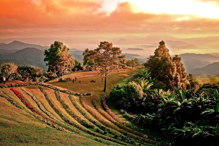 Landscape on a mountain in Chiang Mai  photo