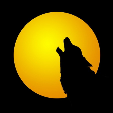 Wolf howling at the moon in the midnigt