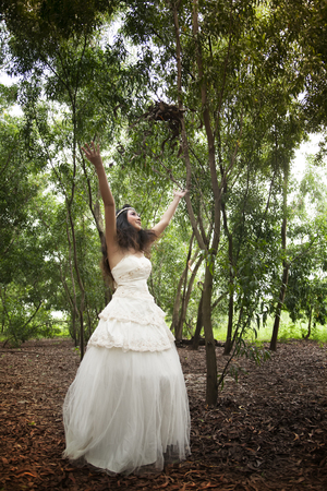 Sets fashion wedding dress concept  photo