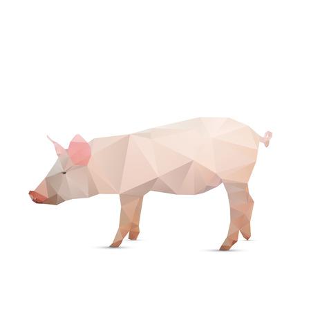 白の背景、ベクトル イラスト上に分離されて抽象的な豚