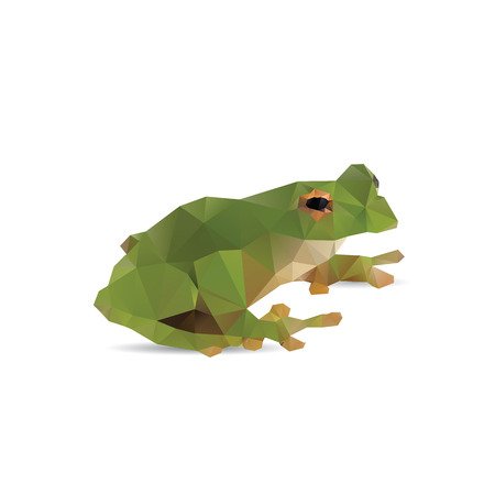 Frog abstract isolated on a white background Vector