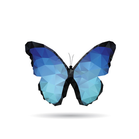 Butterfly isolated on a white backgrounds Illustration