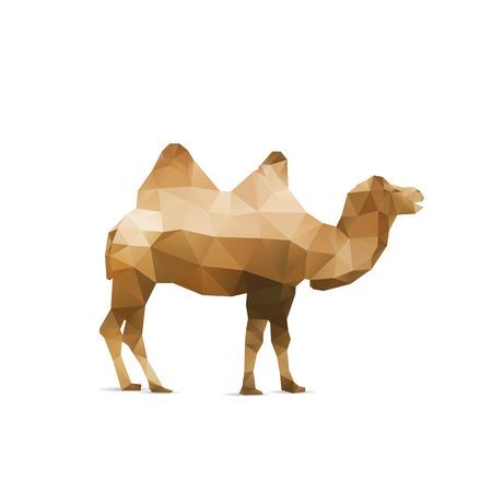 Illustration of abstract origami camel isolated on white background Illustration