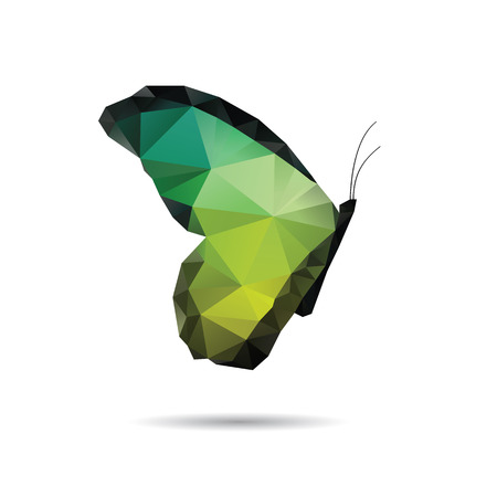 Butterfly isolated on a white backgrounds Ilustrace