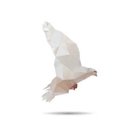 Dove isolated on a white backgrounds Vector