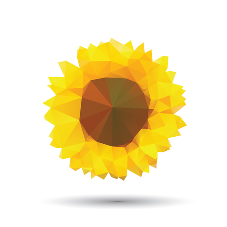 Vector abstract sunflower abstract isolated on a white backgrounds