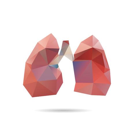 bosom: Pulmones abstracta aislados en fondos blancos