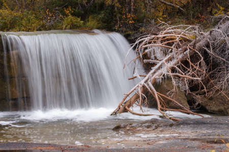 Icy tree by the waterfall in the autumn scenery