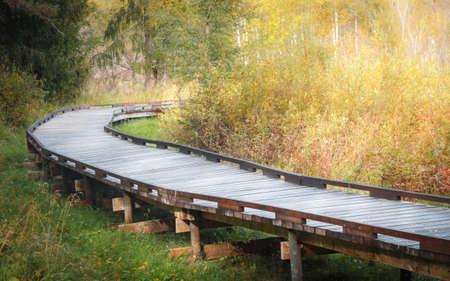 A wooden pier going through a forest in an autumn scenery. Tysjoarna, Sweden.