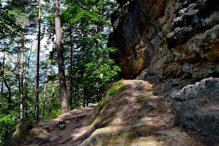 picture Rock formations surrounding the path to the Great Pravcicka Gate, Czech Republic 版權商用圖片