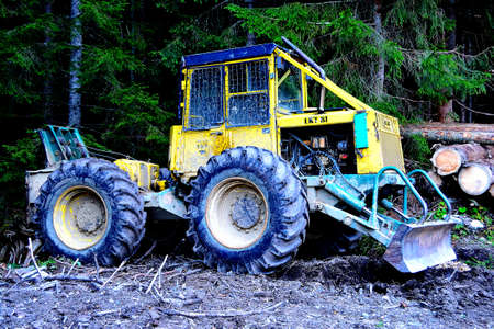photo of a forest wheeled tractor (LKT) parked next to a forest road with a background of trees and felled trunks Stock fotó